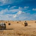 20120923 001 Rolling the Hay (Wm)